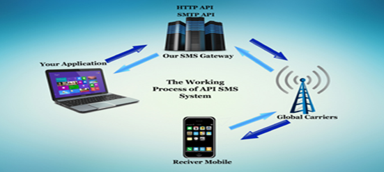 Work procedure of a Bulk SMS API