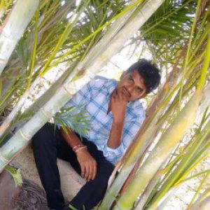 Profile picture of Sreenivas Jampula