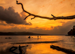 Must know things while travelling to andaman with kids