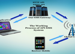 Understanding the Work procedure of a Bulk SMS API