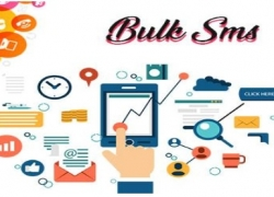 How can Bulk SMS service providers help you in your business?